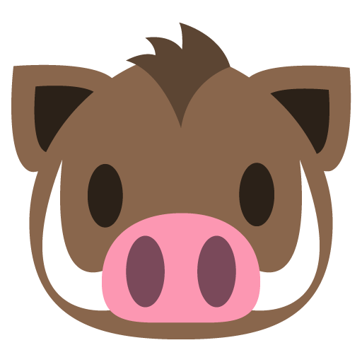 Animal Face Boar